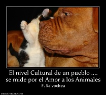 Cultura=Amor a los Animales