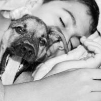 Dormir con tu Mascota