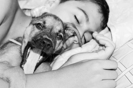 dormir con nuestra mascota