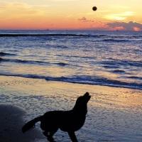 Vacaciones de Verano: Playas en Cerdeña