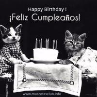 Imprimible Gratis Cumpleaños Felino