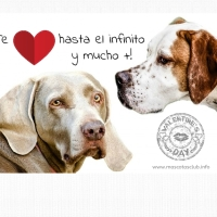 "Tarjeta de San Valentin ""dog friendly"""